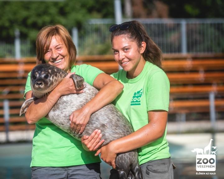 Ötmilliárd forintos fejlesztés kezdődik a veszprémi állatkertben
