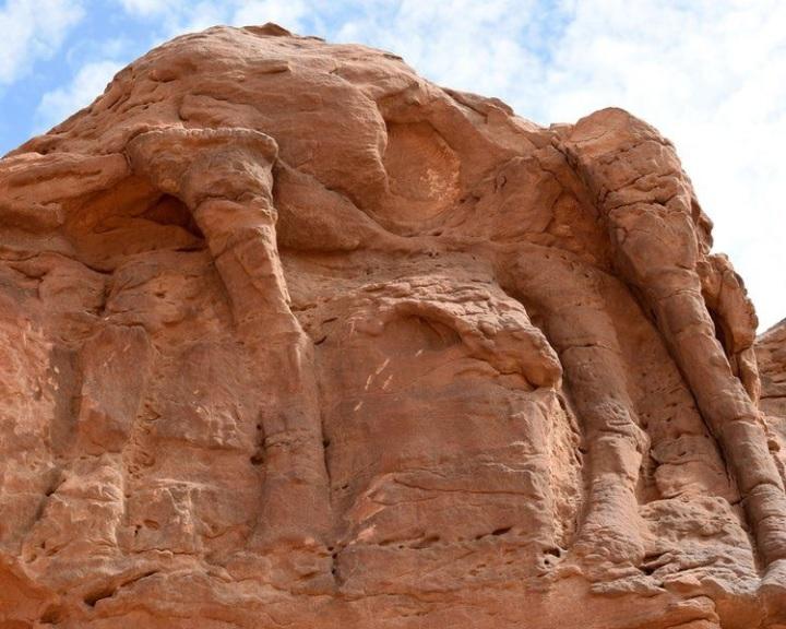 Nyolcezer évesek is lehetnek a Szaúd-Arábiában talált tevefaragványok