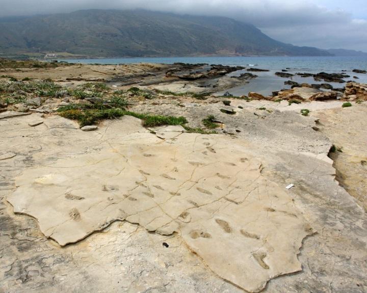 Emberfélétől származó hatmillió éves lábnyomokat találtak Kréta szigetén